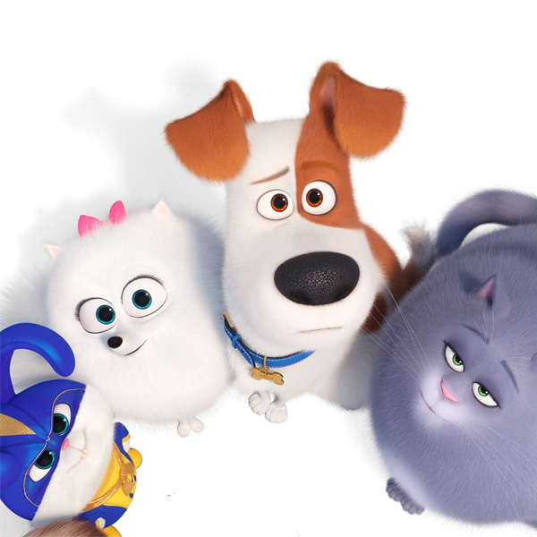 Free Family Film: The Secret Life of Pets 2
